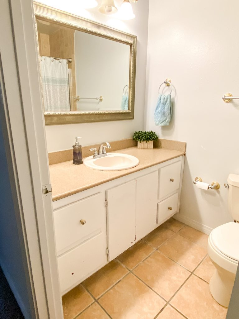 Diy Bathroom Remodel Beginner S Guide Penny Modern